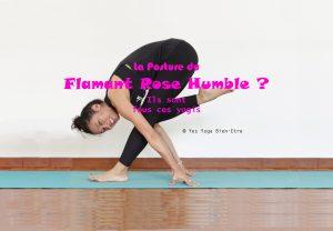 Yoga posture fun flamant rose humble