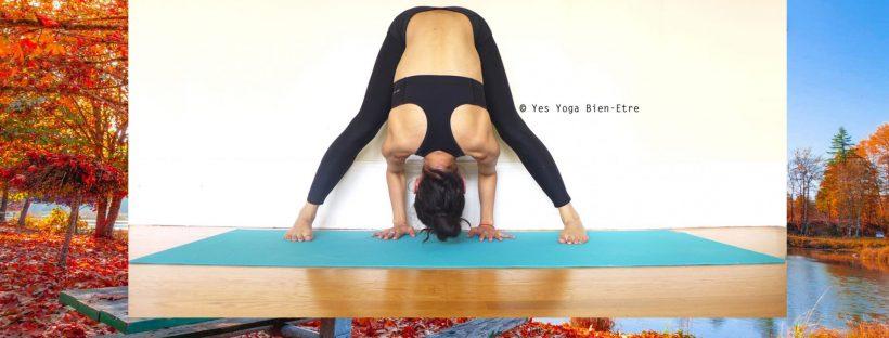 Yoga Yin Automne