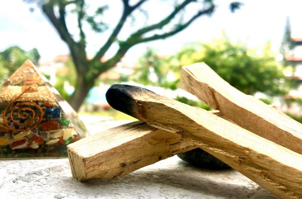Bois sacré: Palo Santo / Bursera graveolens